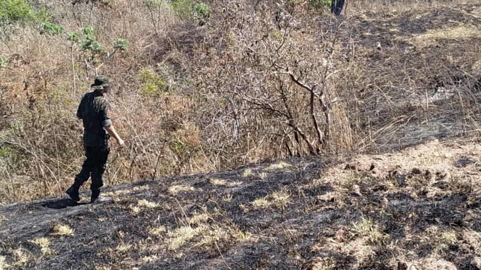 Polícia Ambiental vistoria área queimada — Foto: Divulgação