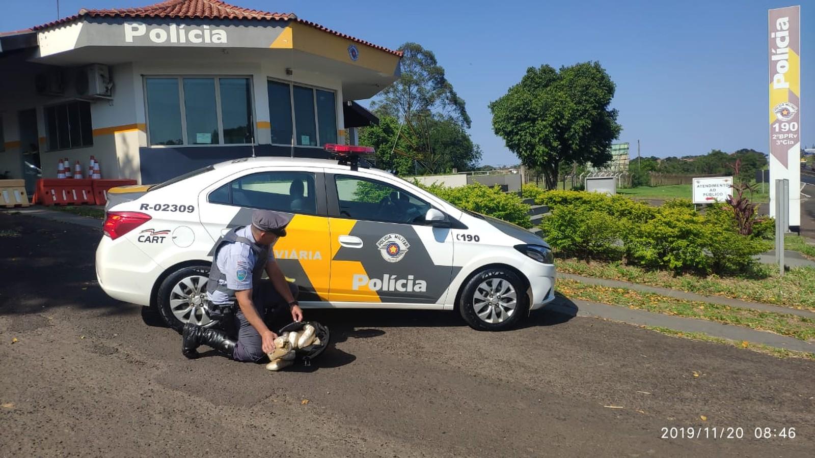 Polícia Rodoviária apreende pacotes de skank com passageira de ônibus em rodovia de Assis — Foto: Polícia Militar Rodoviária/Divulgação