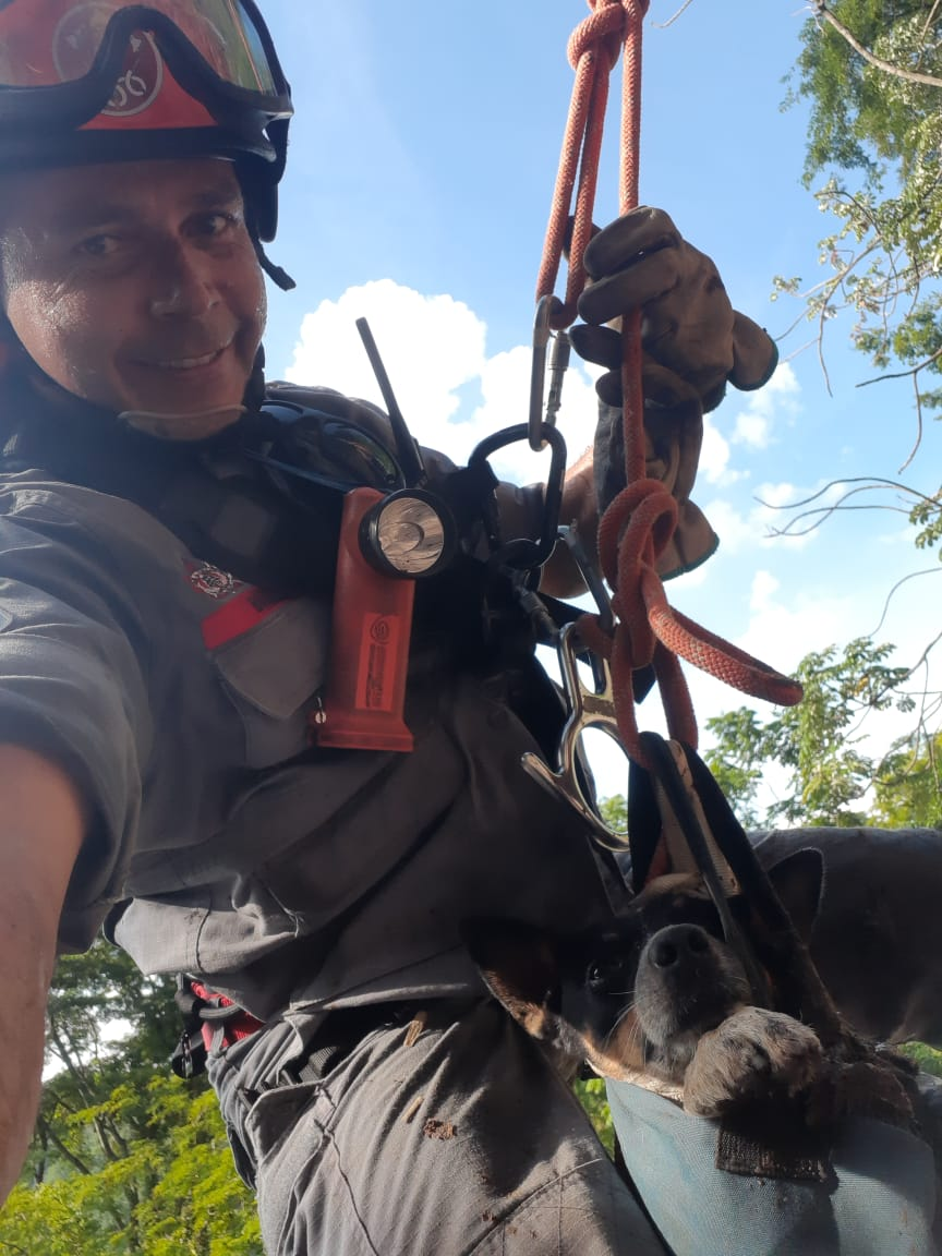 Cãozinho foi resgatado em sacola com técnicas de rapel (Foto: Divulgação)