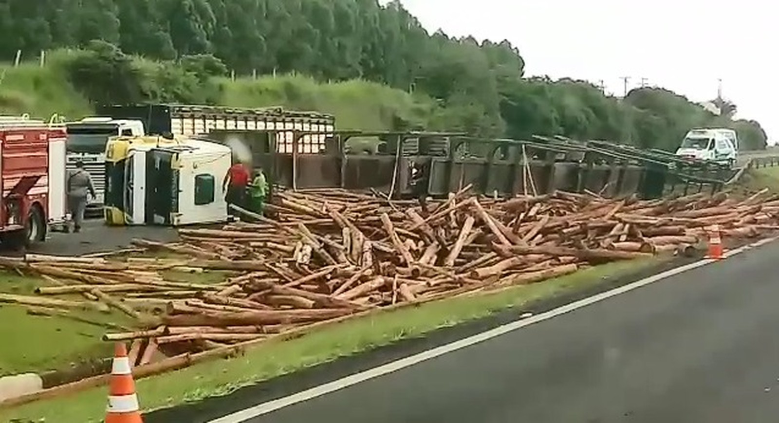 Carreta com madeira tomba em rodovia — Foto: Arquivo pessoal