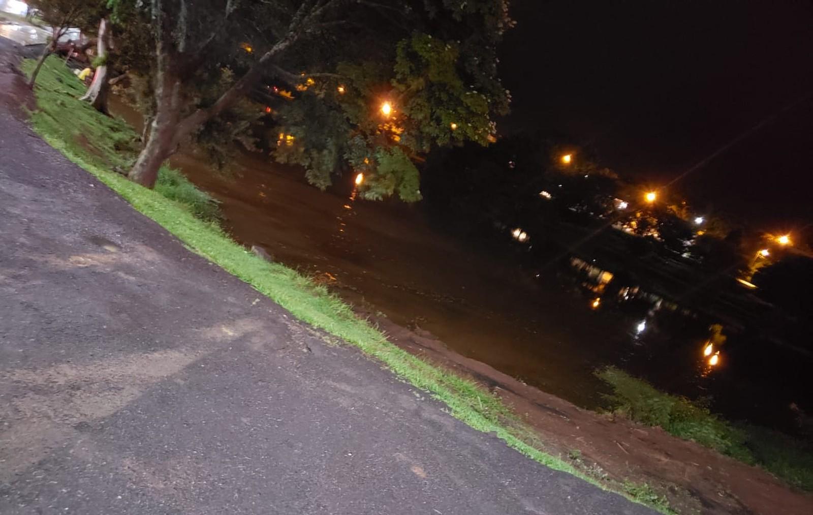Caminhonete bate em árvore e cai dentro de lago em Ourinhos — Foto: Corpo de Bombeiros/Divulgação