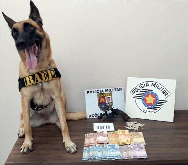 Homem é preso com revólver e drogas em Palmital — Foto: Divulgação