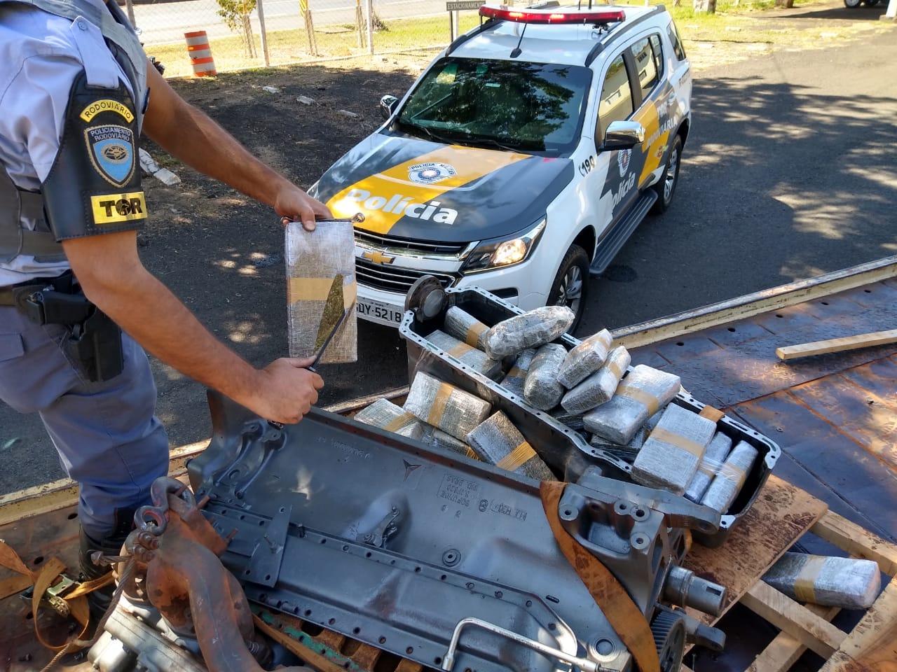 Polícia Rodoviária localiza maconha na Raposo Tavares em Assis — Foto: Polícia Rodoviária/Divulgação