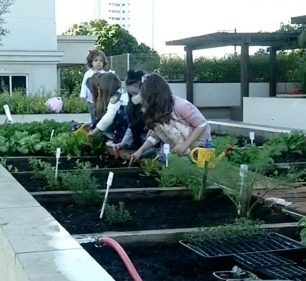 Canteiro virou horta para a criançada em condomínio de Assis: brincadeira e novos hábitos alimentares — Foto: TV TEM/Reprodução