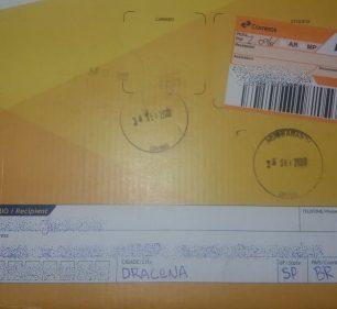 Tabletes de maconha estava escondidos em encomenda entregue pelos Correios — Foto: Polícia Civil