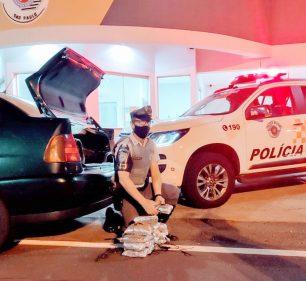 Droga apreendida pela equipe TOR — Foto: Polícia Rodoviária/Divulgação